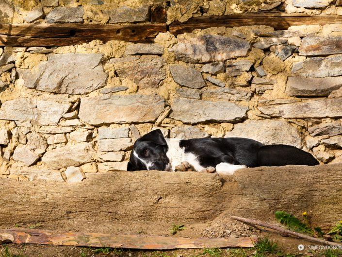 Куче – село Лещен, Западни Родопи
