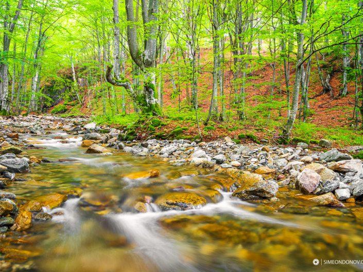 Река Стакевска, Западен Балкан