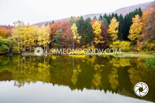 Боянско езеро, Природен парк Витоша
